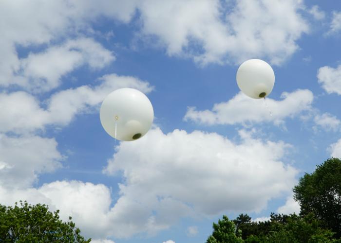 Beste René, Dank voor de foto's van de ballonverstrooiing bij het Zuiderpark. Er zijn inderdaad hele mooie plaatjes bij. Wij hopen ook dat het na maan vader en nu mijn moeder nog lang duurt voor je weer zien. Heel erg bedankt voor de goede service. Met vriendelijke groet, Els Paauw 10-6-2017 Wateringen