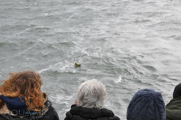 asbijzetting-zee-urn-journey-groen