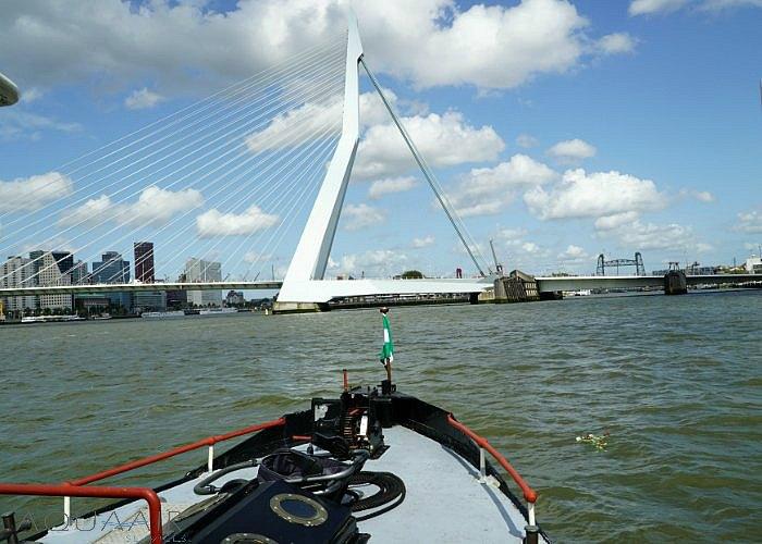 asverstrooiing-rotterdam-maas-zwaan-brug